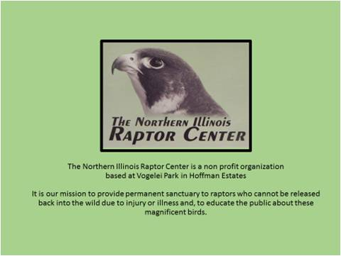 RaptorCenter