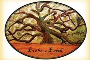 Evolve 2 Earth's Logo